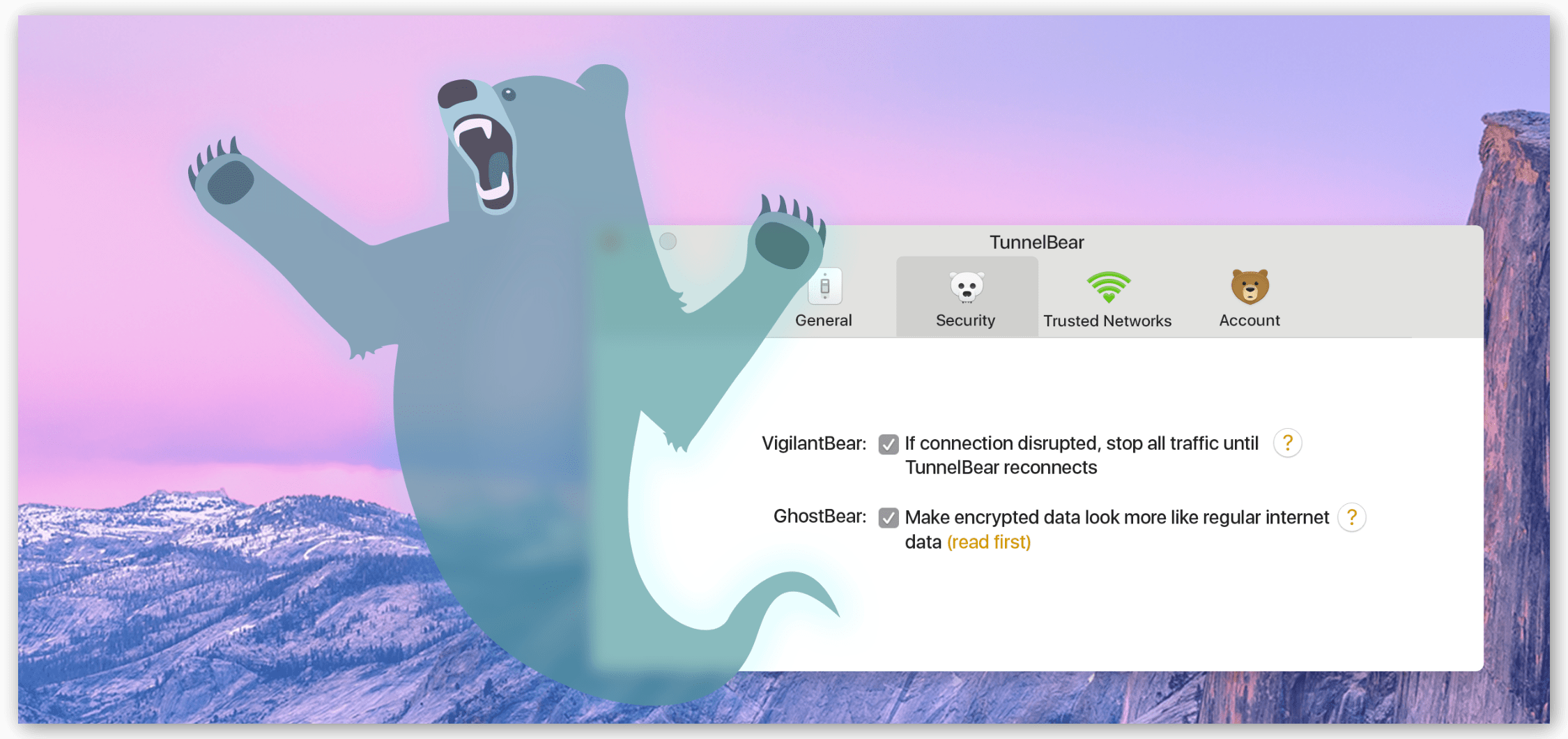 TunnelBear Websitte의 TunnelBear GhostBear 모드 스크린 샷
